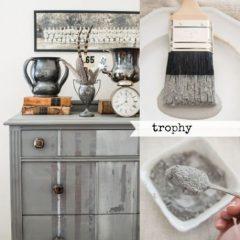 Milk Paint Trophy