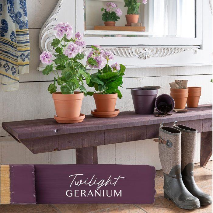 Geranium paars
