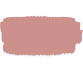 Enchanted echinacea kleurstaal