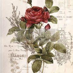 Botanical rose transfer