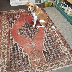 perzisch tapijt handgeknoopt